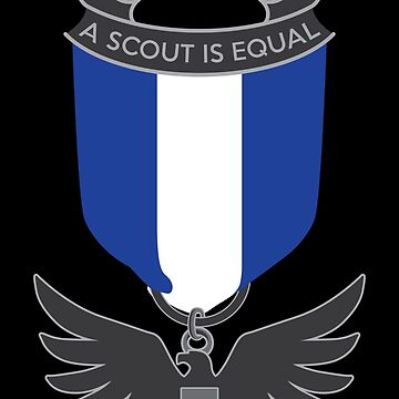 Scouts for Equality Eagle Medal by designurvictory