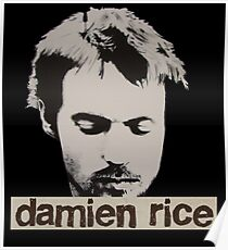 Damien Rice T-Shirt Poster