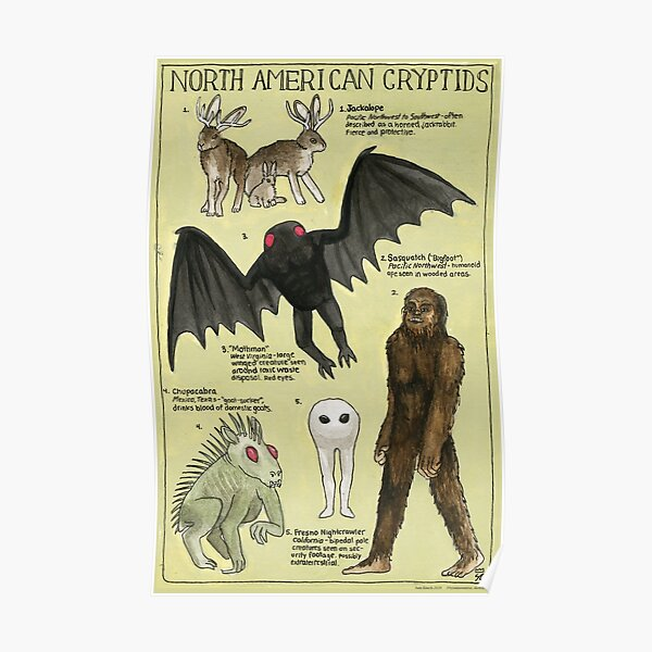 North American Cryptids Poster