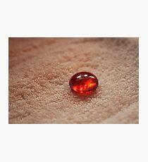 Redbubble - Macro Photography Photographic Print