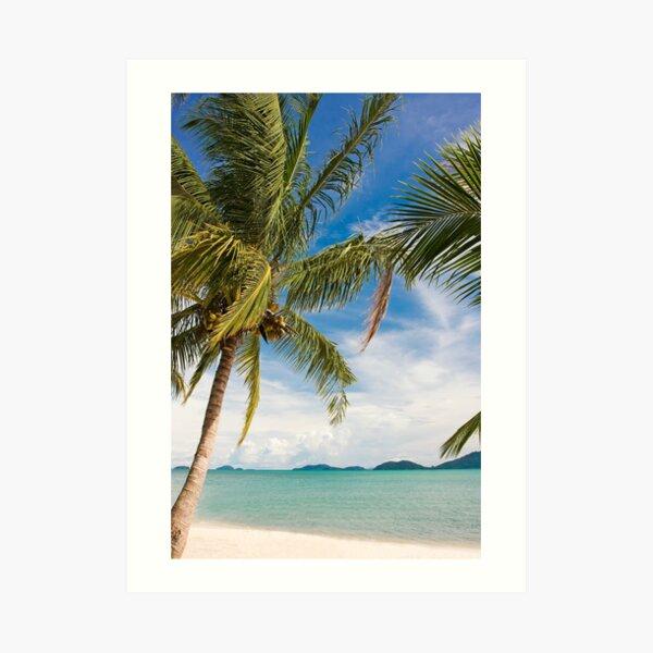 Waving palm trees, tropical destination Art Print