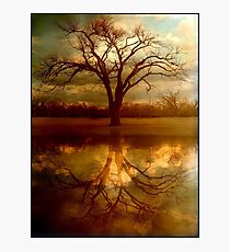 """A Place To """"Reflect"""" Photographic Print"""
