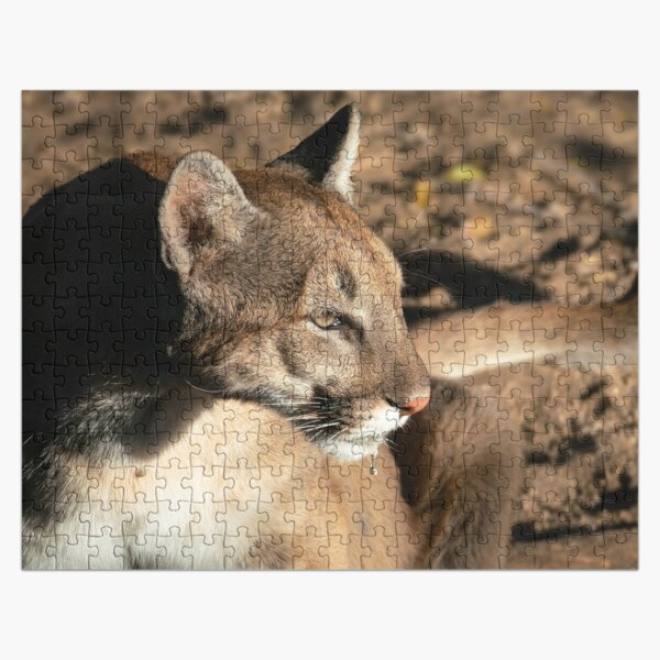 Mountain Lion After a Drink Jigsaw Puzzle