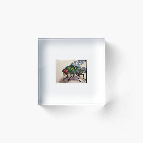 Fly Acrylic Block