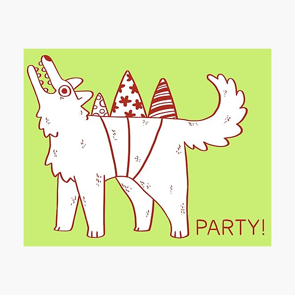 Party Dog Photographic Print