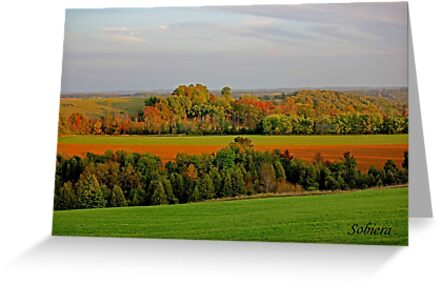 Over Yonder by Rosemary Sobiera