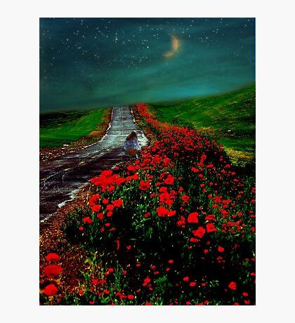 Poppy Picker Photographic Print