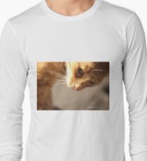 Hey!!  Pay attention to me!!  Long Sleeve T-Shirt