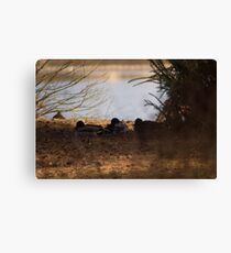 sleeping family Canvas Print