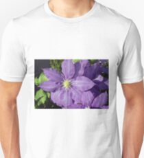 Spring Flower Series 43 T-Shirt