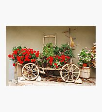 Red Geraniums on Antique Wooden Cart 1 Photographic Print