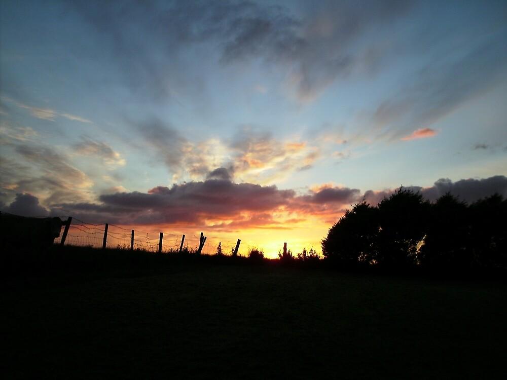 Wild sunset  - Derry Ireland  by mikequigley