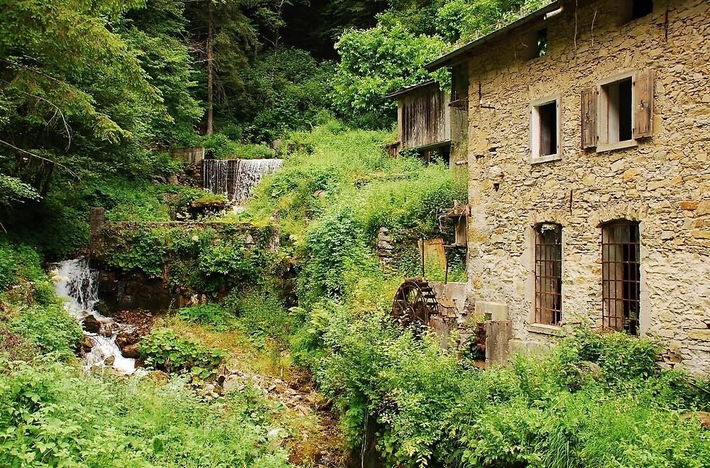 Abandoned Mill Near Salino  by jojobob