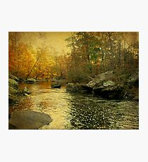 A Golden Autumn at the Unami Photographic Print