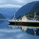 Fjord ferry by night by Arie Koene