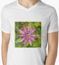 Passiflora Lavender Lady T-Shirt