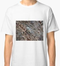 Lyristes Plebejus - Common Cicada Classic T-Shirt