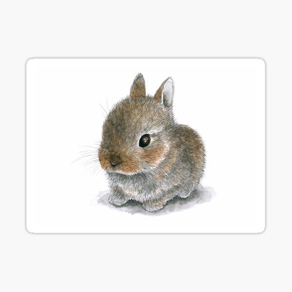 Rabbit 61 Cute Bunny Sticker