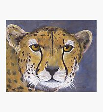 Fast Cat - The Cheetah Photographic Print