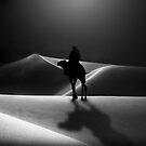 Desert Moonlight by Cliff Vestergaard