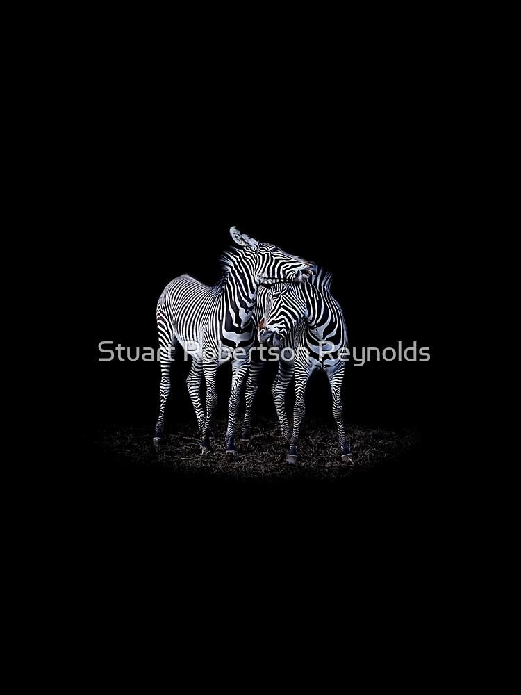 Zebra by Sparky2000
