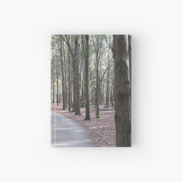 Trees Forest Path Walkway Shalom Park Ocala Florida Hardcover Journal