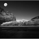 deChelly Moonscape Monochrome by Wayne King