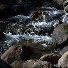 Carson River by Lynn Bawden
