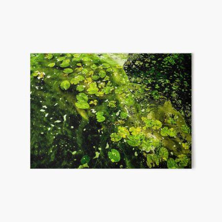 Green sea of leaves Art Board Print