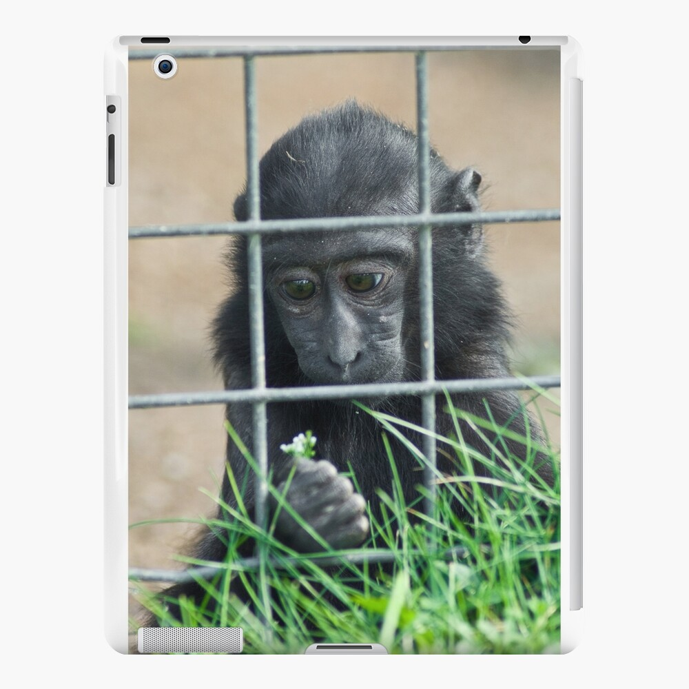 Caged thoughts... iPad Case & Skin