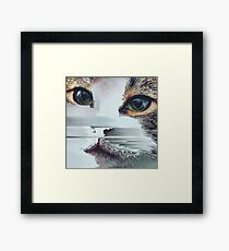 Faded Cat Glitch That Framed Print