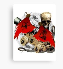 Flags Of Piracy Canvas Print
