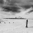 Black and White Photo of Girl Walking on Frozen Lake by Marcie Alban
