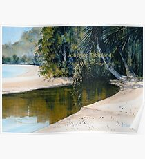 Tidal Creek, Dunk Island Poster
