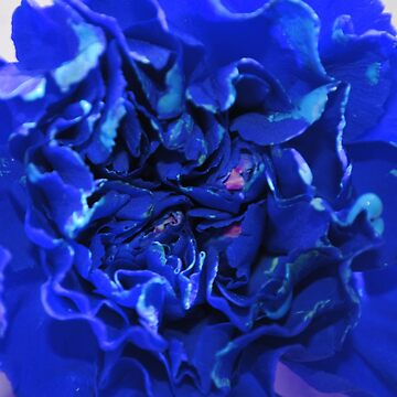 blu flower by Tottobydesign
