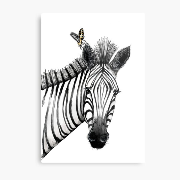 The zebra with the bee Metal Print
