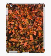 Blätter iPad-Hülle & Klebefolie