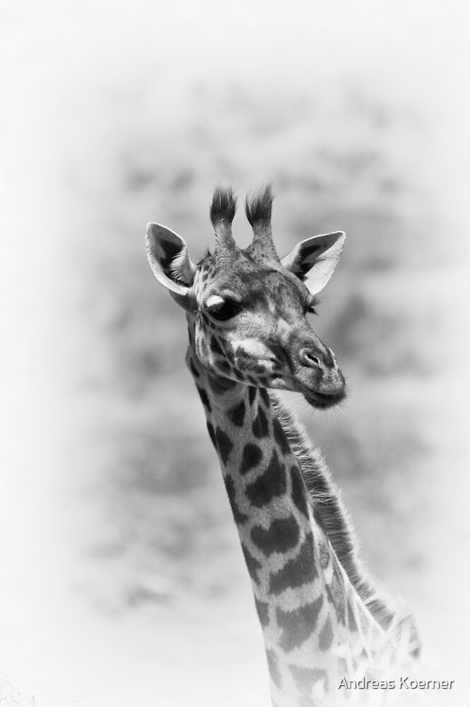 """Attentione"" (B&W) by Andreas Koerner"