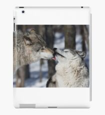 Timber Wolves in love iPad Case/Skin