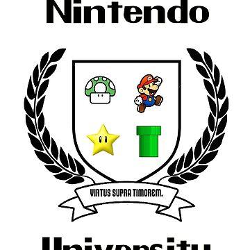 Nintendo University by LittleRedTrike