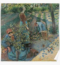Camille Pissarro - Apple Harvest 1888 French Impressionism Landscape Poster