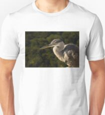 Focused Hunter - a Great Blue Heron Watching for Fish Unisex T-Shirt