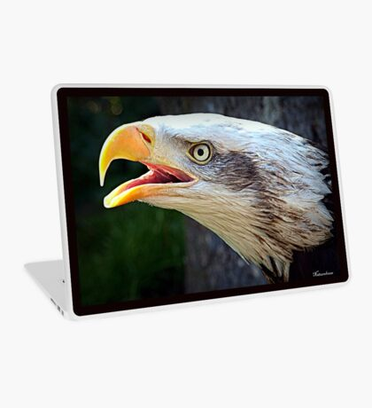Alaskan Bald Eagle Laptop Skin