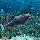 Dolphins play in the reef by Gatterwe