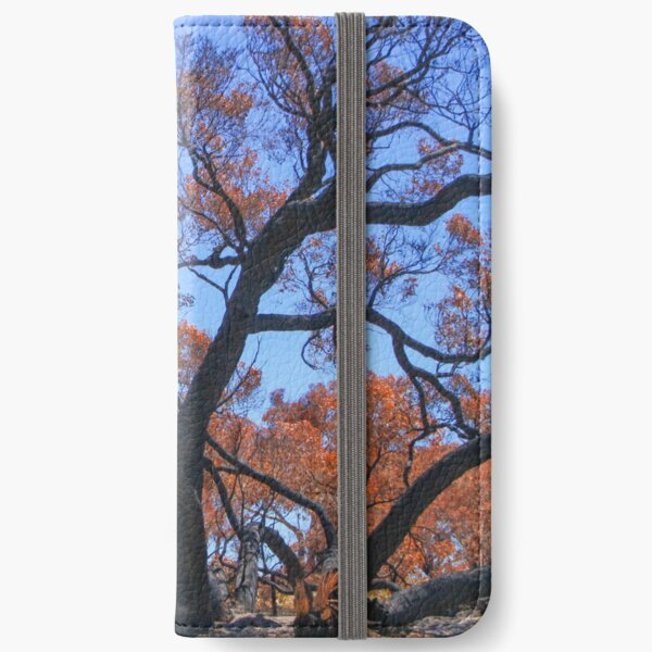 Sunburnt Country iPhone Wallet