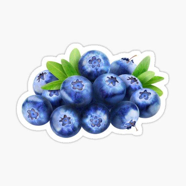 Pile of blueberries Sticker