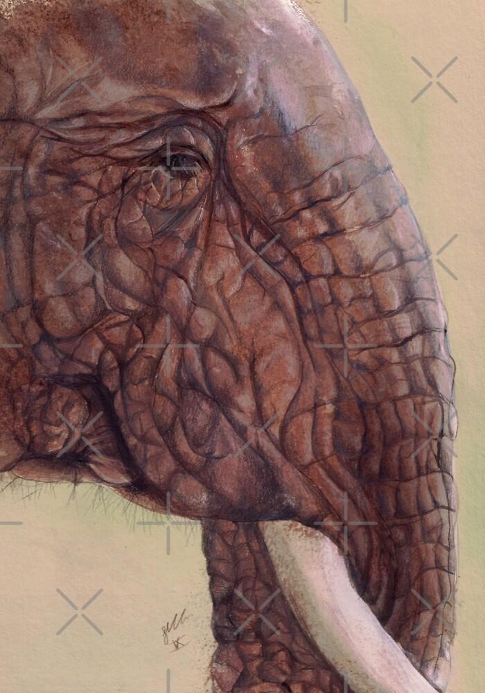 «Elefante» de Sarah  Mac Illustration
