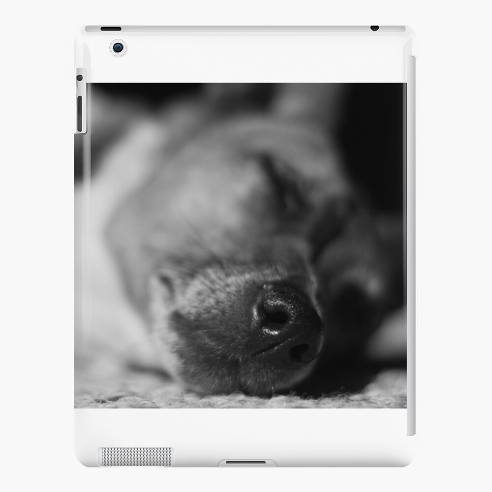 Sleeping Jack Russell  iPad Case & Skin