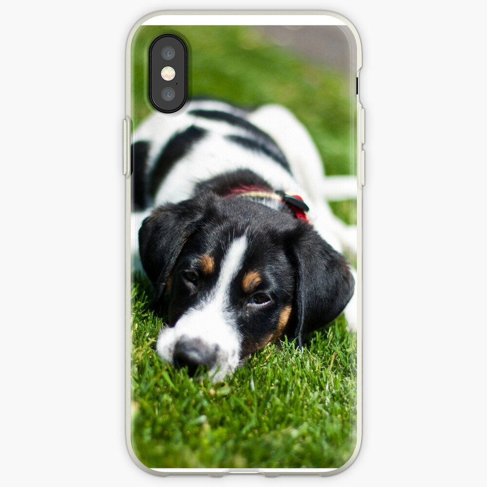 Puppy in the grass iPhone Case & Cover