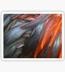 Feathers Sticker